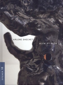 """Blow by Blow"" by Arlene Shechet"