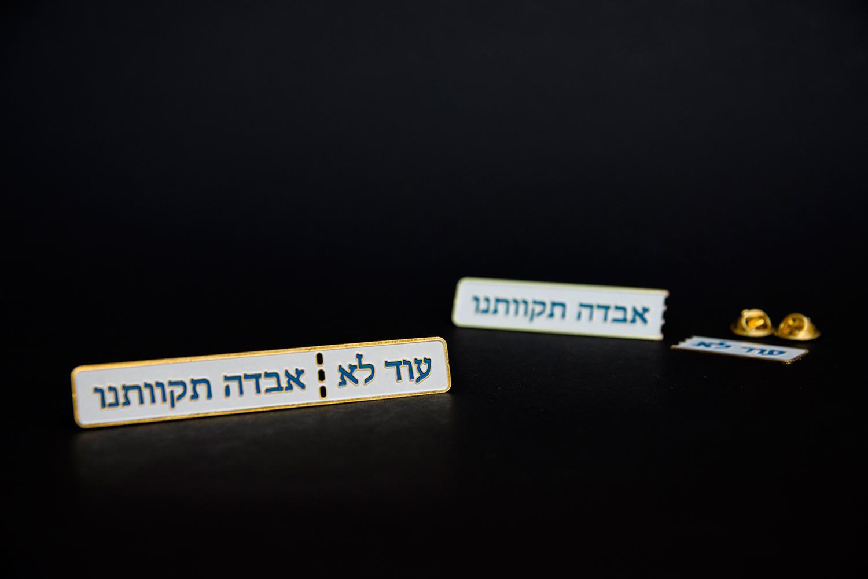 מזכרת מבחירות 2019 / אמיר צובל