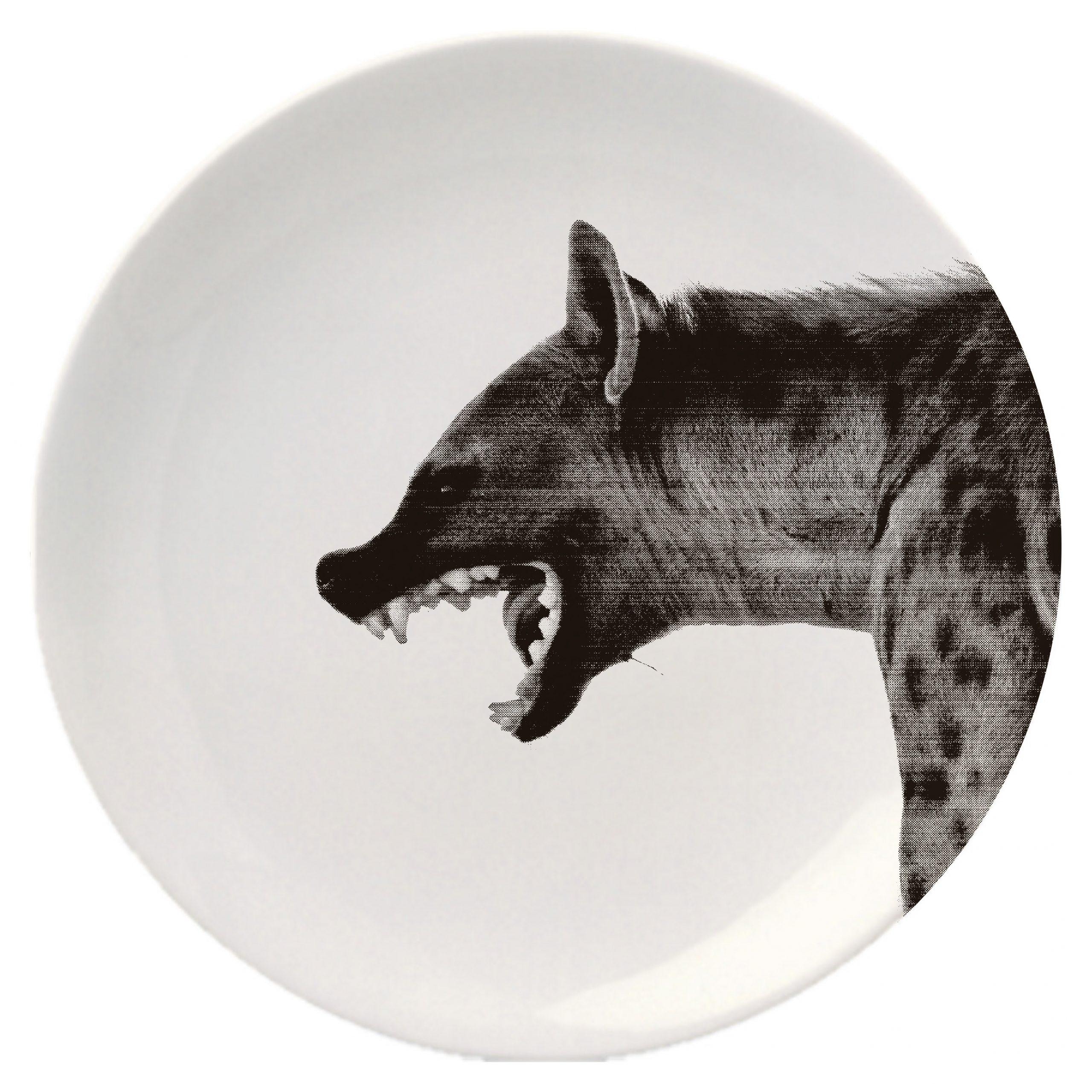 Empty Plates – Lahav Halevy